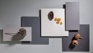 ditail-ceramica-barcelona-mosa-canvas-flat-lay-warm-